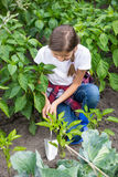 Young girl digging earthing soil at vegetable garden bed Stock Photo