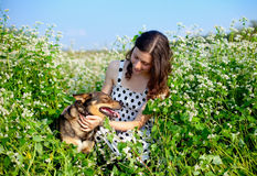 Young girl with dog. Young happy girl with dog on the buckwheat field royalty free stock photos