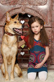 Young girl with dog Royalty Free Stock Photography