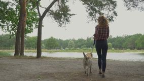 Young girl with the dog on a leash goes to the river stock video footage