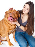 Young girl with  Dogue de Bordeaux Stock Image