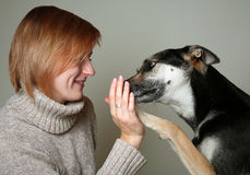 Young girl doing tricks with her shelter dog Stock Photo