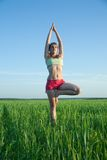Young girl doing yoga against nature Stock Photo