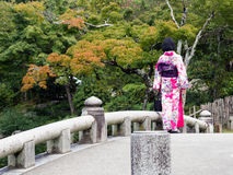 Young girl dressed in kimono in traditional Japanese garden stock photography