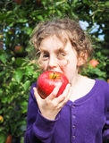 Young girl eating an apple in an orchard Stock Photography