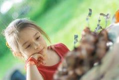 Young girl eats kebab Royalty Free Stock Image