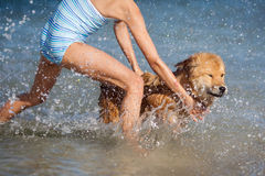 Young girl and an Elo puppy have fun in the sea Stock Photos
