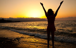 Young girl is enjoying the freedom. Young slim girl is enjoying the freedom. Sunset and sea Royalty Free Stock Image