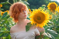Young girl enjoying nature on the field of sunflowers at sunset, portrait of the beautiful redheaded woman girl with a sunflowers royalty free stock image