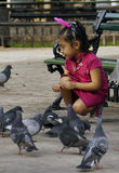 Young girl feeding pigeons/ Stock Photos