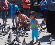 Young Girl Feeding Pigeons In Havana Cuba Royalty Free Stock Image