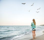 Young Girl are Feeding Seagulls. Young Girl at Beach are Feeding Seagulls Stock Image