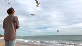 Young girl feeding seagulls on the beach. stock video