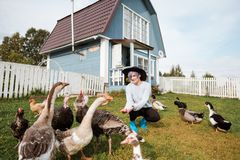A young girl feeds domestic birds, ducks, hens, geese, turkeys in the yard of a rural house. royalty free stock image