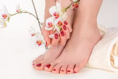 Young Girl Feet And Hands With Dark Red Polish Color Manicure And Pedicure On A Towel In The Beauty Salon Stock Photography