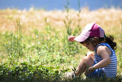 Young girl in a field Royalty Free Stock Photos