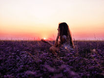 Young girl in a field of purple flowers, pink sunset Royalty Free Stock Image