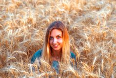 Young girl is in the field wheat, in ripe ears. Royalty Free Stock Photography