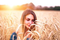 Young girl is in the field wheat, in ripe ears. Stock Image