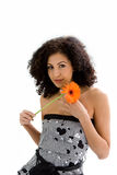 Young girl with flower Royalty Free Stock Photography