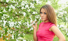 Young girl and flowering tree. Girl in a pink dress on a background of flowering tree Royalty Free Stock Image