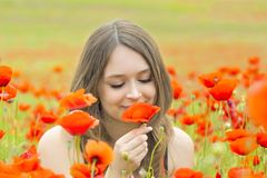 Young girl in the flowers Stock Photography