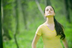 Young girl in forest royalty free stock photos
