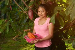 Young girl with fresh raw cocoa pods. On plant background royalty free stock photo