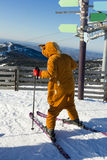 Young girl in funny costumes skiing on a mountain Royalty Free Stock Images
