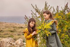 Retro young girl gives the elder sister mimosa on a green plateau near the sea in a storm Royalty Free Stock Images