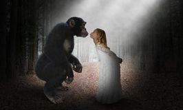 Girl Kiss Chimp, Nature, Love, Hope royalty free stock images