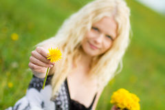 Young girl giving a dandelion on. Meadow in spring, focus is on the dandelion stock photo