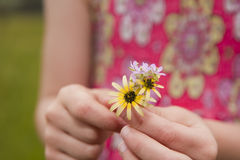 Young girl giving flowers Stock Photos