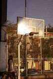 Young girl walks her dog in the morning at sunrise in a basketball court