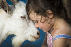 Young girl with goat Royalty Free Stock Photo