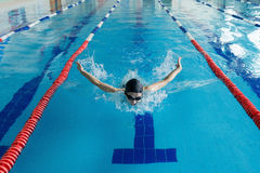 Young girl in goggles and cap swimming butterfly stroke style in the blue water pool. Royalty Free Stock Photography