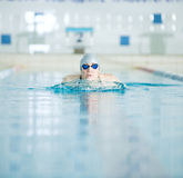 Young girl in goggles swimming breaststroke stroke Stock Photography