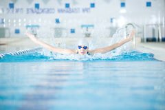 Young girl in goggles swimming butterfly stroke style. Young woman in goggles and cap swimming butterfly stroke style in the blue water indoor race pool Royalty Free Stock Images