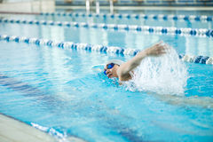 Young girl in goggles swimming front crawl stroke Royalty Free Stock Photo