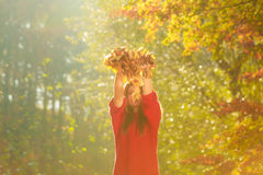 Young girl with golden leaves. Stock Images