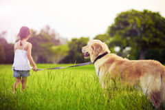 Young girl with golden retriever walking away Stock Photography