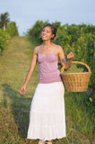 Young girl in grape harvest with big wicker basket for storing g Stock Photography