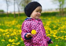 Young girl on green meadow. Stock Photos