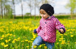 Young girl on green meadow. Royalty Free Stock Photos