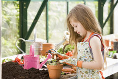 Young girl in greenhouse putting plant in pot Royalty Free Stock Image
