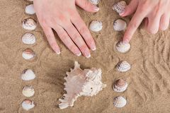 Young girl hands with french nails polish on sandy beach with sea shell stock images