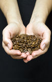 Young girl hands holding coffee beans. Isolated young girl hands holding coffee beans Royalty Free Stock Images