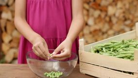 Young girl hands shelling pea stock footage