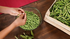 Young girl hands shelling peas into a glass bowl stock video footage