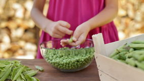 Young girl hands shelling peas - rack focus stock video footage